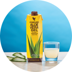 The Best Aloe Vera in the World